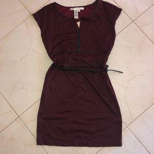 Max Studio Burgundy Stripes Dress With Belt